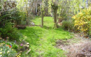 Chingford Garden design - before shot