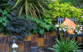 Modern Town Garden East London ED183 Highams Park - re-shoot - (August 2021 photos)